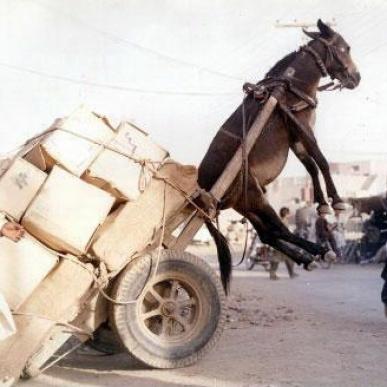 cache_overloaded