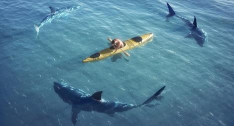 cache_shark canoe